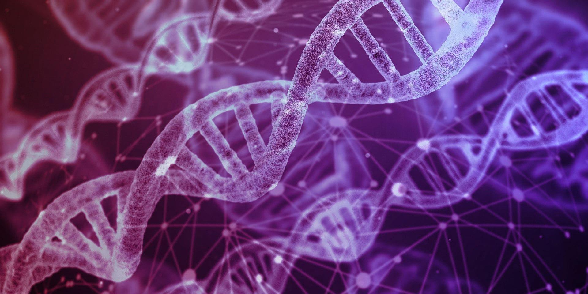 Produktdaten-DNA
